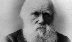 Evolutionary Theories and Charles Darwin On the Origin of Species